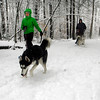 Gloucester: Megan and Nathan Staples of Lanesville snowshoe through Ravenswood Park with their Siberian Huskies, Marley and Ember, yesterday afternoon. Photo by Kate Glass/Gloucester Daily Times Monday, March 9, 2009