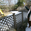 Manchester: Josepha Mains shows the backyard of her Pine Street home where her great grandchildren usually play. Her property is one of three that the town is seeking to buy because the land is contaminated from the town's old burn dump. Photo by Kate Glass/Gloucester Daily Times Tuesday, March 17, 2009