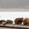 Manchester: Harold Jones walks his thirteen-year-old dog, Susie, around a foggy Kettle Cove yesterday afternoon. Jones said he just got back from spending a month visiting his daughter in Australia, where it was 80 degrees. Photo by Kate Glass/Gloucester Daily Times Sunday, March 29, 2009