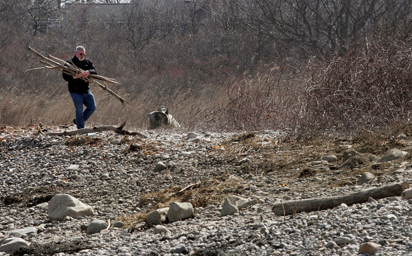 Rockport: Rob Handel collects pieces of driftwood washed up from this weekend's storm at Loblolly Cove yesterday afternoon. He and his wife, Starr, will make an arbor with the wood. Photo by Kate Glass/Gloucester Daily Times