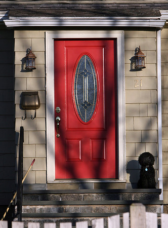 ALLEGRA BOVERMAN/Staff photo. Gloucester Daily Times. Gloucester: A dog waits at the top of the steps at a home on Cherry Street in Gloucester on Monday afternoon.