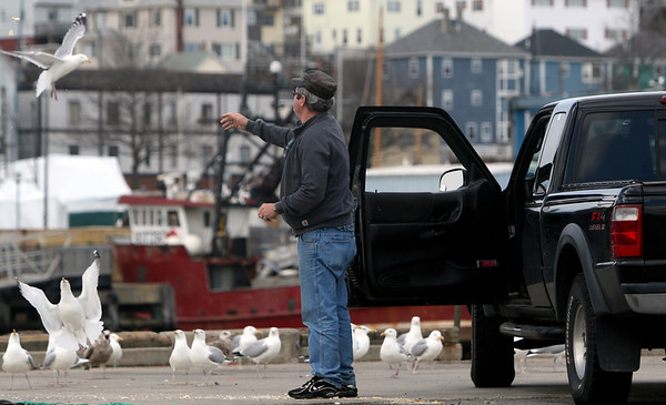 ALLEGRA BOVERMAN/Staff photo. Gloucester Daily Times. Gloucester: Carlos Bagaco of Gloucester feeds leftover bread to gulls at the state fishing pier on Friday afternoon. He likes to come daily to the pier because he loves looking out at the water. He was throwing the bread up into the air so the birds could catch them in midair.