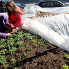 ALLEGRA BOVERMAN/Staff photo. Gloucester Daily Times. Gloucester: Lara Lepionka, left, of  The Cape Ann Farmers' Market's Backyard Growers Program, with member Antoinetta Vila, examining the raised beds at Lepionka's house on Monday. The organization will hold the second of two garden trainings this Saturday, March 31, from 9:30 to 11:30 a.m. at the Open Door, 29 Emerson Ave., (rear entrance).