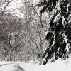 130308_GT_ABO_SNOW_1