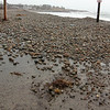 Allegra Boverman/Gloucester Daily Times. Penzance Road in Rockport was closed on Thursday during the storm. Pebble Beach appeared to have relocated to the paved road due to the turbulent waves and weather.