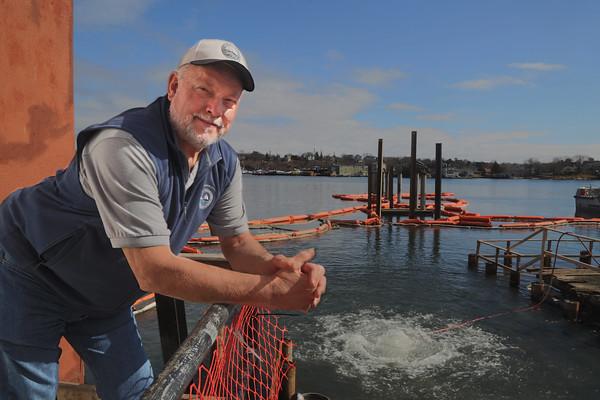 Harbormaster Resigns