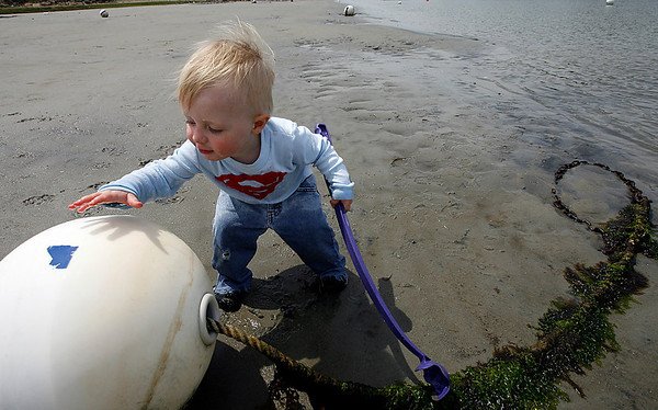 Essex: Fletcher Wilson, 1, examines a mooring buoy as he explores Conomo Point at low tide on Wednesday. Photo by Kate Glass/Gloucester Daily Times Thursday, May 21, 2009