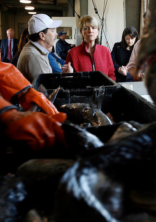 Gloucester: Larry Ciulla, owner of the Gloucester Seafood Dislpay Auction,  shows Massachusetts Attorney General Martha Coakley around the facility yesterday morning. Photo by Kate Glass/Gloucester Daily Times Wednesday, May 13, 2009