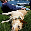 Manchester: Paula Foley of Manchester relaxes at Tuck's Point with her dog, Lucy, yesterday afternoon. Foley was a teacher in Gloucester for 34 years and is now enjoying retirement. Photo by Kate Glass/Gloucester Daily Times Tuesday, May 19, 2009