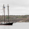 Gloucester: The Schooner Ernestina enters Gloucester Harbor as part of its four-day journey home to New Bedford following restoration work at Boothbay Harbor Shipyard in Maine. Photo by Kate Glass/Gloucester Daily Times Wednesday, May 6, 2009
