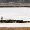 Gloucester: A man fishes for stripers in the Little River yesterday afternoon. The fish usually return to Cape Ann this time of year. Photo by Kate Glass/Gloucester Daily Times Monday, May 4, 2009