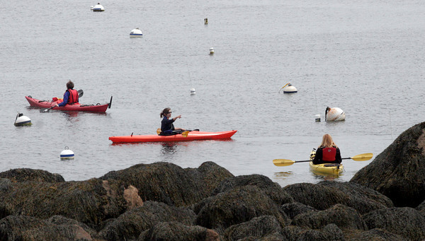 Rockport: A group of kayakers from North Shore Kayak head out past Bearskin Neck on Saturday afternoon. Photo by Kate Glass/Gloucester Daily Times