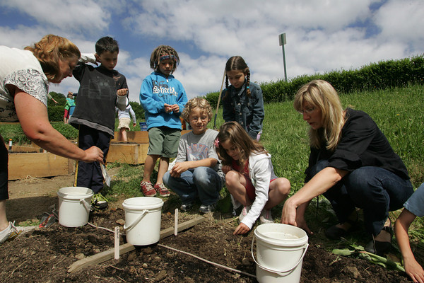 Gloucester: The students of West Parish Elementary School help plant squash in the new garden in front of the school Thursday morning. Planting the new crops was a school-wide project allowing each student to be a part of the planting process. Pictured, from left, volunteer Leslie Bealieu, second graders Bryant Haight Elijah Grammas, Charlie Ercolani, Isabella Giordano, Maya Churchill and volunteer Jill Buchanan.  Mary Muckenhoupt/Gloucester Daily Times