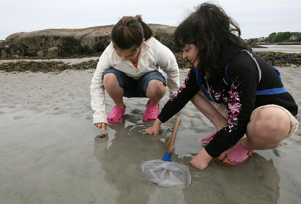 Gloucester: Lexi Carnivale, left, and Alessia Saputo, both students in Mrs. McKechnie's second grade class at West Parish Elementary School, examine a hermit crab in a tidal pool at Wingaersheek Beach yesterday morning. The students were exploring the relationships between living creatures and their habitat through a program sponsored by the Gloucester Education Foundation. Photo by Kate Glass/Gloucester Daily Times