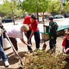 Gloucester: From left, O'Maley Middle School students Ricky Paquiot, teacher Maura Feener, Joe Burnham, Derek Johnsen, Sam Pollock and teacher Dulce Nearis work together to plant an azalia bush in front of the school Friday afternoon.  The azalia was donated by Wolf Hill to the students of the Imaginatin Station which is a self container classroom with students who have unique abilities. Mary Muckenhoupt/Gloucester Daily Times