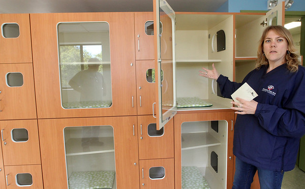 ALLEGRA BOVERMAN/Staff photo. Gloucester Daily Times. Gloucester: Sunniva Buck, executive director of Cape Ann Animal Aid, shows off the new cat condos at the center.