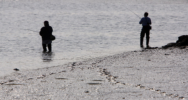 ALLEGRA BOVERMAN/Staff photo. Gloucester Daily Times. Gloucester: Mark Asaro of Gloucester, far right,  fishes with a friend for stripers in the Little River in Gloucester on Monday afternoon.