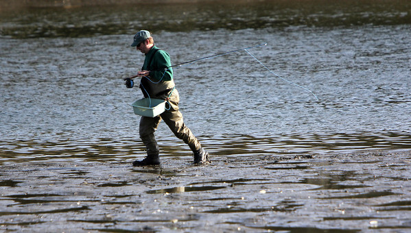 ALLEGRA BOVERMAN/Staff photo. Gloucester Daily Times. Gloucester: An angler slogs along to another spot to fish for stripers in the Little River in Gloucester on Monday afternoon.