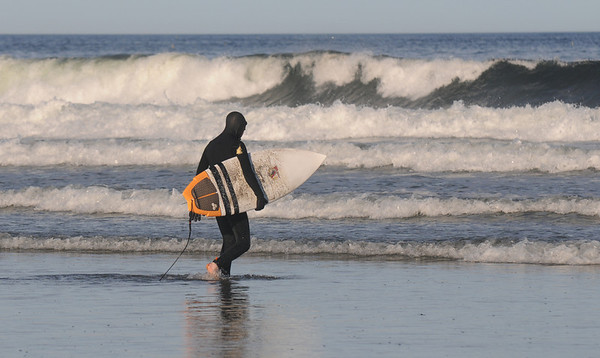 Gloucester: A surfer heads out as the waves builds off Good Harbor Beach in Gloucester Wednesday evening. Jim Vaiknoras /staff photo