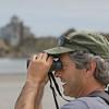 Rare Birds on Good Harbor Beach