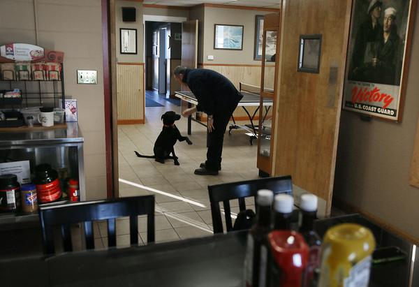 Bruin the Coast Guard Dog