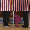 131105_GT_MSP_VOTING_02