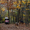 Rockport: Tory Falon of Gloucester takes her daughters, Phoebe and Currie, and dogs, Gus and Strider, for a walk through Halibut Point Monday afternoon. Photo by Kate Glass/Gloucester Daily Times Monday, November 2, 2009