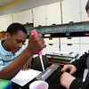 Gloucester: Paul Sanon uses a micro pipettor to prepare DNA samples with his partner Elizabeth McCormack in Eric Leigh's freshman biology class Thursday morning. Thanks to a grant given to Gloucester High School, students a given a hands on opportunity to understand the bio tech process.  Mary Muckenhoupt/Gloucester Daily Times
