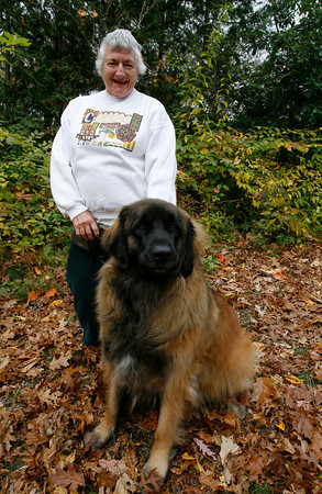 Margaret Eddy of Rockport with her dog, Niko. Eddy, who turned 80 on Wednesday, recently returned from a trip to Venezuela where she went white water rafting. Photo by Kate Glass/Gloucester Daily Times Wednesday, November 11, 2009