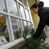 Rockport: Mary Faino, owner of The Paper Mermaid, plants greens in her window box earlier this week. Faino said it was a difficult decision to switch out the box because her flowers were still blooming due to the mild weather. Photo by Kate Glass/Gloucester Daily Times Monday, November 23, 2009