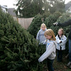 Manchester: Jenny Knowles points out the tree her daughters, from left, Ali, 11, Chloe, 9, front, and Lexie, 6, wanted to buy at the Boy Scout Troop No. 3 annual Christmas tree sale at the Scout House on School Street Saturday afternoon.  Jenny thougth this was a good sized tree becuse it was not too tall and plenty bushy. Mary Muckenhoupt/Gloucester Daily Times