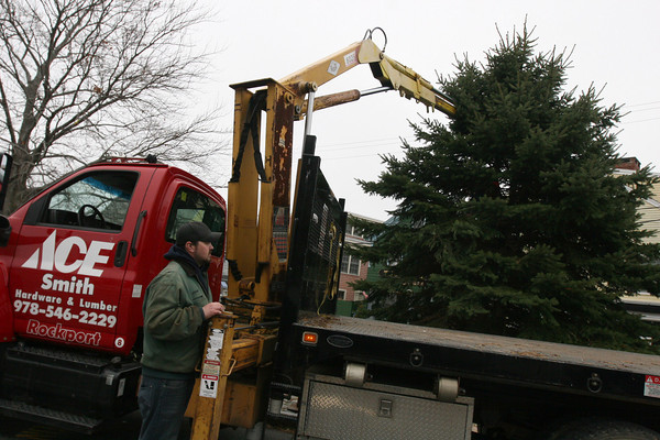 Rockport: Jeremy Carr of Ace Hardware, center, removes tools from the ground as he and members of the Rockport DPW set up the town's Christmas tree in Dock Square. The tree was donated by Sunny Favaloro and is approximately 25 feet tall. The official lighting ceremony is on Saturday, December 5th at 4:30. Photo by Kate Glass/Gloucester Daily Times Tuesday, November 24, 2009