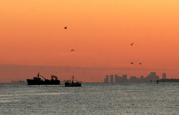 Gloucester: A herring trawler heading out to sea and a fishing vessel returning to the harbor are silhouetted by the sunset off Niles Beach yesterday afternoon. Photo by Kate Glass/Gloucester Daily Times Tuesday, November 17, 2009