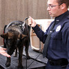 "Gloucester patrolman Chris Genovese, stands next to Mako, a Belgian Malmois, and his new partner. This pair creates the first K9 Unit of the Gloucester Police Department in its history. After typing out a seven-page report on his own, unpaid time, Genovese made a bid for the new canine addition, which will greatly improve the department's tracking and searching for illegal articles, such as illegal drugs. Genovese received the go-ahead from Chief Mike Lane and full support by Mayor Carolyn Kirk. ""He's a thousand times better at smelling than humans,"" said Genovese on Thursday afternoon as he introduced Mako to Kirk. Currently, Mako is in a 14 week training academy, and will eventually be trained to track narcotics. Mako will only cost the police department $1 to $1.50 per hour, after start-up costs. A deal deal for the department, said Lane."