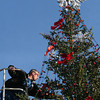 Courtesy photo/Gloucester Daily Times. Gloucester: Volunteer Bob Francis hangs up decorations on the city Christmas Tree set up in Kent Circle on Friday afternoon.