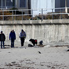 Allegra Boverman/Gloucester Daily Times. A search team walks along Long Beach on the Rockport side on Wednesday during a land search of a few beaches with Mission for the Missing. They were searching for any sign of Caleigh Harrison, who went missing from that beach in April.