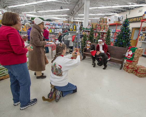 DESI SMITH/Staff photo.  Joan Chabot (kneeling) takes a photo of Alexander the Great a Standered Poddle, with Santa, Gene Skrabut, as owner Thoma Robertson of Rockport (left) looks on at Ace Hardware in Rockport Saturday morning. This was the Cape Ann Animal Aids 11th Annual Santa Paws Event, were pet owners could bring in their dogs and take home a Holiday Photo with Santa for a $10:00 donation that will benefit the Cape Ann Animal Aid.   November 22,2014