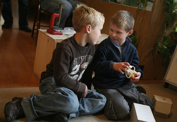 Gloucester: Griffen Kempskie, 7, helps his brother, Gavin Kempskie, 5, figure out if the skull he's holding is from a carnivore, herbivore, or omnivore during the ExSkullent Adventure program at Ravenswood Park's Cape Ann Discovery Center on Saturday. The program focused on identifying what an animal ate, and how well they heard and smelled based on their skulls. Photo by Kate Glass/Gloucester Daily Times
