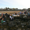 Gloucester: Dozens of swimmers and spectators gather off Wheeler's Point for the 22nd Annual Thanksgiving Morning Swim yesterday. Photo by Kate Glass/Gloucester Daily Times