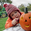 Essex: Kevin Coughlin, 4, draws on some ears to the pumkin he carved at the Pumpkin Festival at Cogswell's Grant Saturday afternoon. The festival included such activities as hayrides, face painting, a pie eating contest and pumpkin crafts. Mary Muckenhoupt/Gloucester Daily Times