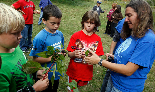 Rockport: Jessica Kagle of Kestrel Educational Adventures shows (from left) Patrick Kern, Cameron Murphy, and Kurt Roller how to identify plants during a program at Rockport Elementary School yesterday. Photo by Kate Glass/Gloucester Daily Times Tuesday, October 6, 2009