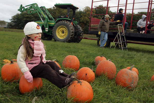 Essex: Anneliese Camp, 3, rests on a pumpkin after taking a hayride out to a pumpkin patch at the Pumpkin Festival at Cogswell's Grant Saturday afternoon. The festival included such activities as face painting, a pie eating contest and pumpkin crafts. Mary Muckenhoupt/Gloucester Daily Times