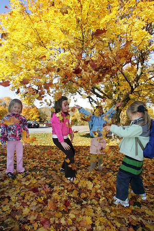 Essex: From left Grace Gerhardt, 4, and her sister Bonnie, 6, Anna Whitten, 6, and her sister Jane, 5, play in a pile of leaves in front of Essex Elementary School after school was released Thursday afternoon. Mary Muckenhoupt/Gloucester Daily Times
