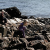 Rockport: Mills Schulte, 6, and his sister, Taylor, 9, climb on the rocks at Cape Hedge Beach in Rockport yesterday afternoon. The family was visiting from New York to close up their summer home for the season. Photo by Kate Glass/Gloucester Daily Times Monday, October 12, 2009