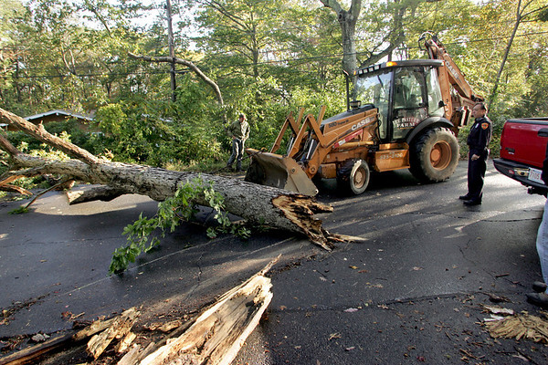 Gloucester: A backhoe from Lee Pasture Farm pulls a tree out of the road after heavy wind and rain caused the large oak to fall across Hesperus Avenue Wednesday afternoon. Mary Muckenhoupt/Gloucester Daily Times