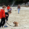 Manchester: Chase Reynders, left, and Jack Erdmann walk Chillie along Singing Beach on Thursday afternoon. Thursday was the first day dogs were allowed back on the beach. Photo by Kate Glass/Gloucester Daily Times Thursday, October 1, 2009