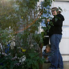 Gloucester: Addison Frank, 3, hides behind his mom, Kellie Frank, as she does some pruning outside their home in East Gloucester on Monday afternoon. Photo by Kate Glass/Gloucester Daily Times Monday, October 12, 2009