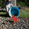 Gloucester: Jack Delaney, 4, of Annisquam rakes leaves off the walkway so he and his sister, Cate, 7, can jump in them yesterday afternoon. Although they only jumped a couple times, both said it was worth the effort. Photo by Kate Glass/Gloucester Daily Times Monday, October 12, 2009