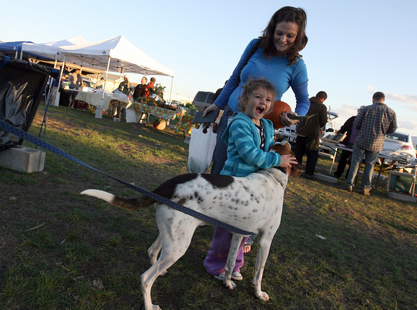 Gloucester: Rowan Trainor giggles as Duncan licks her hand while she and her mom, Laura Trainor, shop at the last Cape Ann Farmers Market of the season on Thursday. Photo by Kate Glass/Gloucester Daily Times