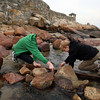 Rockport: Frederick and Rasmus Orry Baggers of Denmark construct a dam along Front Beach yesterday afternoon. Their family had hoped to go on a whale watch in Gloucester, but since none were going out, they spent the day in Rockport. Photo by Kate Glass/Gloucester Daily Times